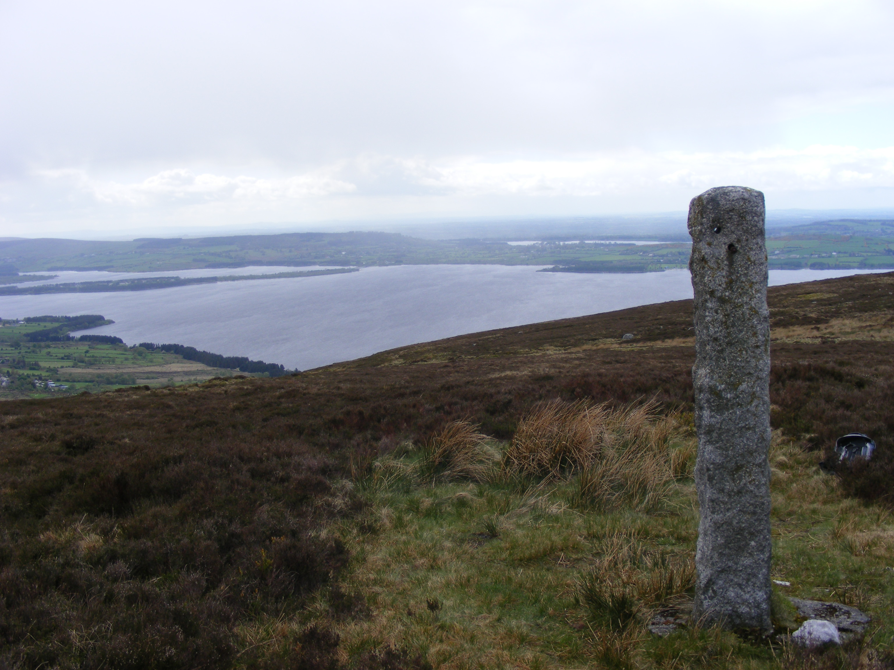 The memorial stone with Poulaphouca Reservoir in               the background.